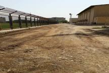آغاز پروژه ۲ هزار متری آسفالت مجموعه ورزشی تختی بندر امام خمینی