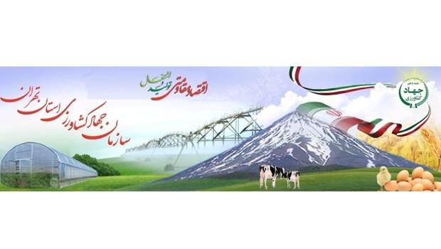 38 تیم بهداشتی نظارت بر عرضه دام در استان تهران را برعهده دارند