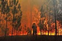 آتش سوزی 2 باغ در البرز مهار شد