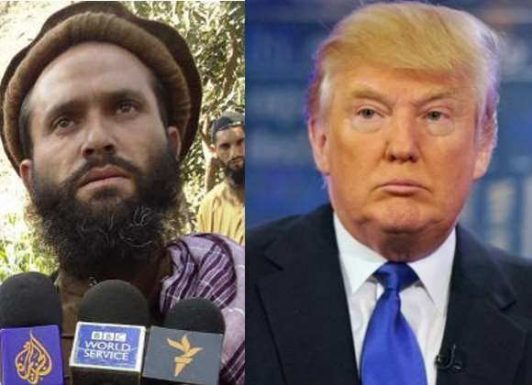 دام غارنشینان برای رئیس جمهور آمریکا؛چگونه طالبان افغانستان ترامپ را فریب داد؟