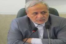 معاون نهاد ریاست جمهوری: دولت حجیم به تضعیف نظام می انجامد