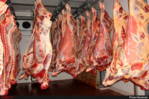 گوشتهای منجمد پرطرفدارتر از کشتار روز   نرخ گذاری یکباره مسئولان موجب التهاب بازار  عوامل اخلال در بازار گوشت