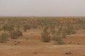 یک چهارم مساحت فردوس بیابان است