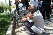 ۲۶۲۸ سالمند در قزوین از بهزیستی مستمری دریافت میکنند