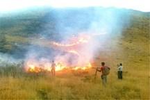 انسان عامل 99 درصد آتشسوزیها در عرصههای طبیعی البرز
