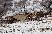 25 خانوار روستایی گرفتار در برف اندیکا امداد رسانی شدند