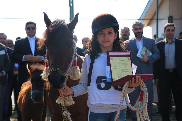 جلوه گری ۷۶ اسب در هجدهمین جشنواره ملی اسب کاسپین