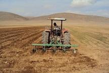 چهار هزار هکتار مزارع خراسان رضوی زیر کشت پاییزه رفت