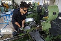 توسعه و تخصصی کردن مهارتهای حرفهای لازمه حل مشکل بیکاری است