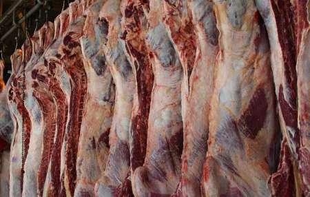 یک مسئول استانی: افزایش هرگونه قیمت گوشت قرمز در خراسان شمالی غیرقانونی است