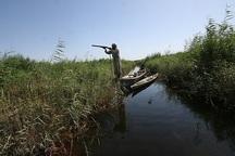 چهار تالاب خوزستان پذیرای زمستان گذرانی  پرندگان مهاجر