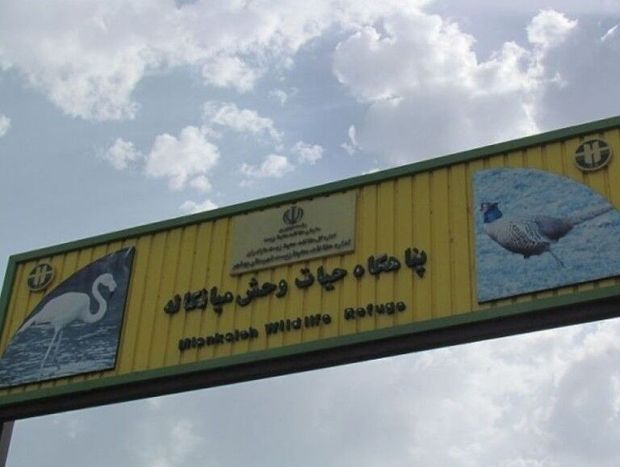 وقف پناهگاه حیات وحش میانکاله، نبش قبر ادعای ۵۰ ساله