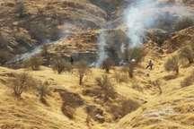 آتش سوزی در منطقه چم برکه شهرستان لالی مهار شد