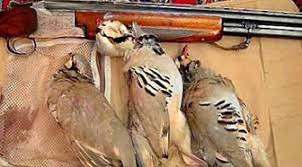 چهار شکارچی متخلف در بروجرد دستگیر شدند