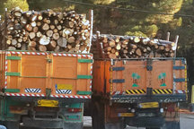 کامیون های حامل چوب در گلستان توقیف می شوند