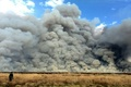اعلام علت آتشسوزی تالاب میقان  باتلاقی بودن منطقه و نیاز به امداد هوایی