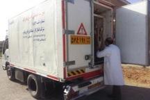 515 گواهی بهداشتی، قرنطینه ای حمل دام و طیور در تکاب صادر شد