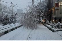 بارش برف موجب قطع برق 90 نقطه از شهرستان ری شد