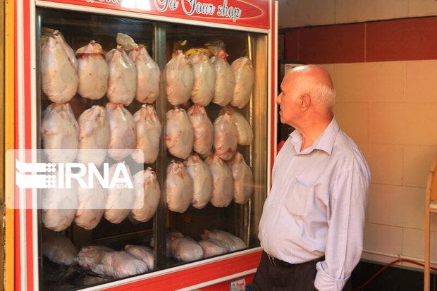 متخلفان بازار مرغ بوشهر اعمال قانون میشوند
