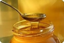 افزایش37 درصدی تولید  عسل در چهارمحال و بختیاری
