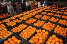 2420 تن میوه عید  در آذربایجان شرقی توزیع شد