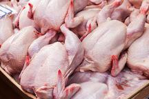 تکلیف قیمت مرغ در کارگروه تنظیم بازار کردستان روشن نشد