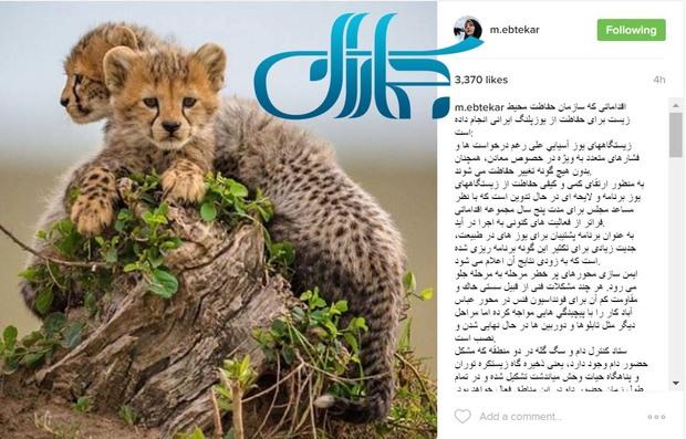 اقدامات سازمان حفاظت محیط زیست برای حفاظت از یوزپلنگ ایرانی