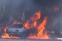 ۷ کشته و زخمی حاصل تصادف در محور بابامیدان -یاسوج ۴ نفر بر اثر حادثه سوختند