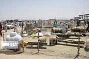 ۱۶تیم بهداشتی در سیستان و بلوچستان بر نذورات عید قربان نظارت میکنند