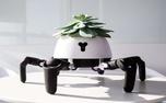 این ربات از گل های خانگی مراقبت می کند+ عکس