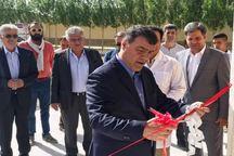 آزمایشگاه فریز اسپرم و انتقال جنین اسب در یزد افتتاح شد