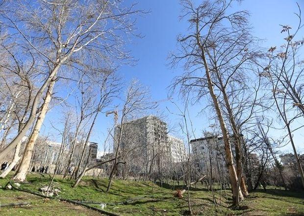 باغات؛ پای ثابت جلسات شورای شهر تهران