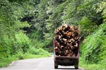 توقیف بیش از سه هزار اصله چوب قاچاق در آستارا