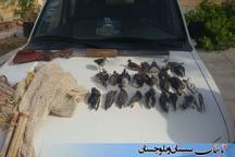 دو گروه شکارچی پرندگان وحشی دستگیر شدند