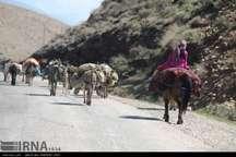 کوچ عشایر به مناطق ییلاقی استان ایلام آغاز شد