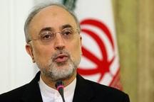 صالحی: مدارس هسته ای موجب افتخار ایران هستند