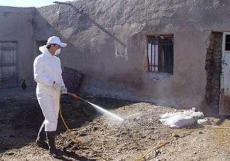 اجرای طرح سم پاشی واحدهای دامی در دزفول با مشارکت بسیج