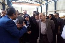 بازدید رئیس سازمان میراثفرهنگی از سرای گردشگری «مهر و ماه»