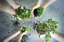 حفظ منابع طبیعی احترام به آیندگان است