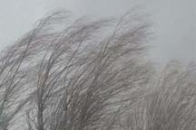بادهای شمالی در قزوین وزیدن می گیرد