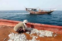 حسرت ماهی در کنار دریا
