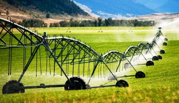 66 طرح کشاورزی در همدان بهره برداری می شود