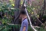 کشف جسد حلقآویز جوان ۳۰ ساله در یک باغ