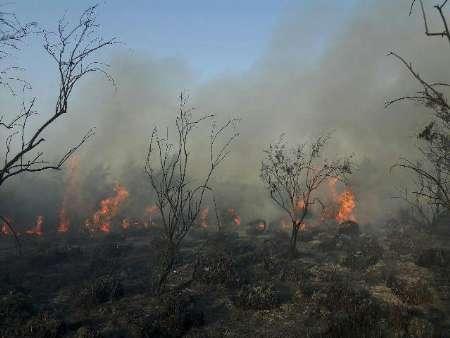 آتش بار دیگر در میانکاله شعله ور شد