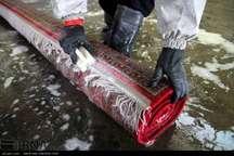 قالیشویی و کارواش ها به تصفیه خانه فاضلاب تجهیز شوند