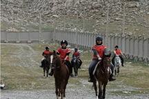 نفرات برتر مسابقات سوارکاری استقامت در کرمانشاه معرفی شدند