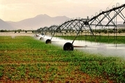 تجهیز 656 هکتار از اراضی کشاورزی قزوین به آبیاری نوین
