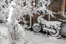 سرما و برف با هم به پیشواز یلدا می روند