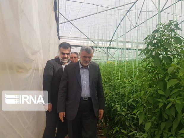 طرحهایی که وزیر جهادکشاورزی در غیاب خبرنگاران افتتاح کرد