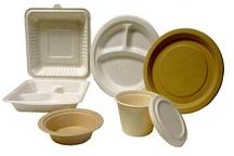 جایگزینی ظروف یک بار مصرف گیاهی با ظروف پلاستیکی در اصناف